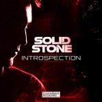 Solid Stone - Introspection